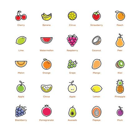 25 fruits icon set. Colorful modern design.