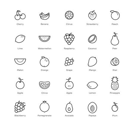Früchte und Beeren Symbole gesetzt. Schwarz-Weiß-Design. Vektorgrafik