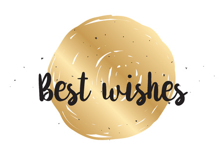 best wishes: Best wishes inscription. Greeting card with calligraphy. Hand drawn lettering design. Photo overlay. Typography for banner, poster or clothing design. Vector invitation.
