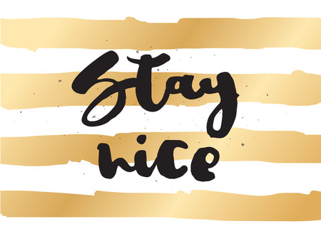 nice stay: Stay nice inspirational inscription. Greeting card with calligraphy. Hand drawn lettering design. Photo overlay. Typography for invitation, banner, poster or clothing design. Vector quote Illustration