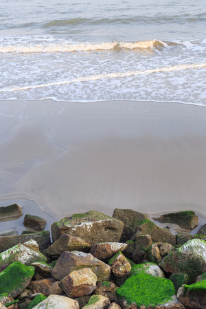 shores: sea sand and moss on rocky shores Stock Photo