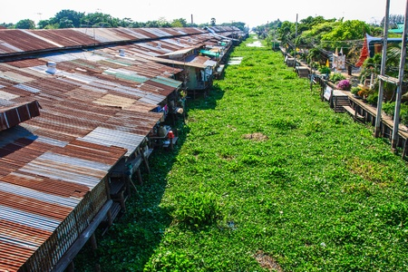 Waterside community and water hyacinth, thailand photo