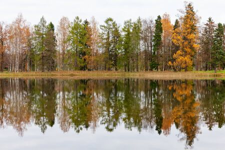 Autumn trees and their reflection in the water, background Stock Photo
