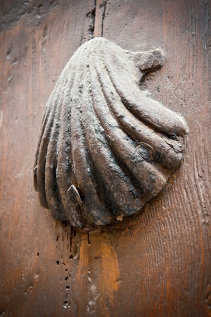 Pilmgrim Shell on a wooden door photo