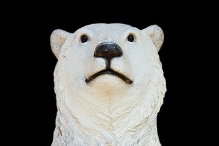 wet bear: polar bear on black background