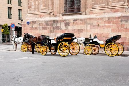 horse carriage in Malaga, Spain photo