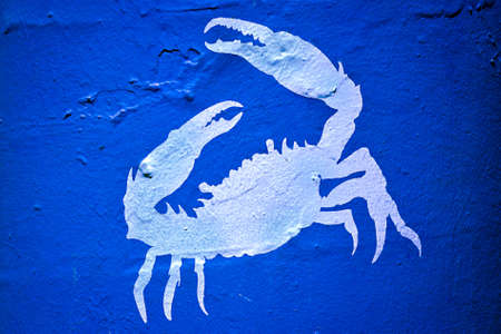 crab in sea painted on wall  photo