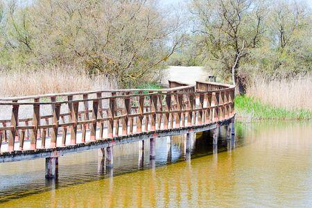 wooden bridge in Tablas de Daimiel in Spain, natural park Stock Photo - 15687662