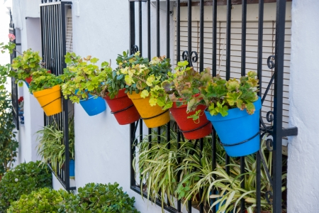 pots in a street in Frigiliana in Costa del Sol, Malaga Province, Andalusia, Spain photo