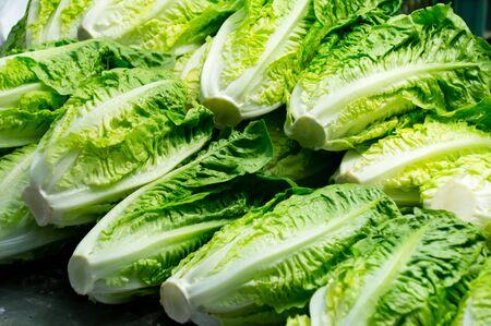 lettuce in a market Stock Photo - 20947603