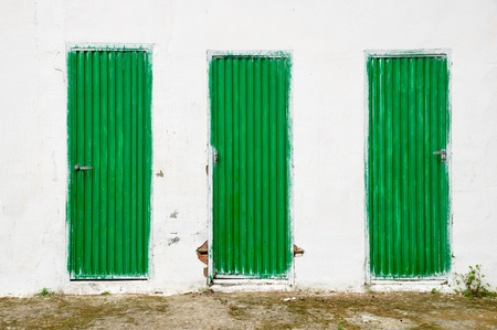 old green metallic doors photo