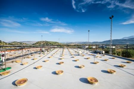 olive oil industry in Cordoba, Spain photo