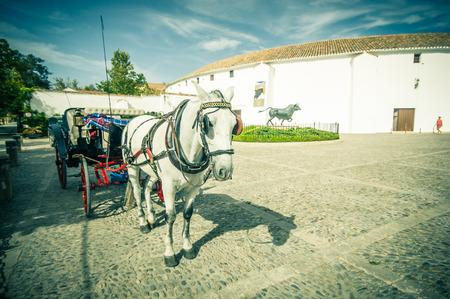 bull rings: RONDA, SPAIN - OCTOBER 19: outside bullring on October 19, 2014 in Ronda, Malaga, Spain. Its population is approximately 35,000 inhabitants.