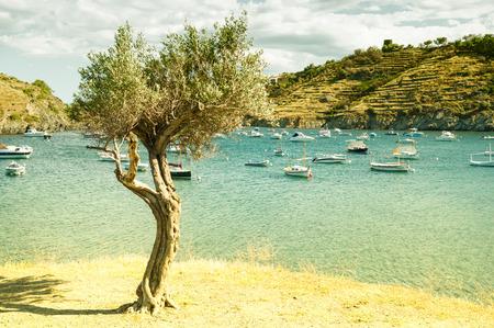 CADAQUES, SPAIN - JULY 21: View of Cadaques, one of the most touristic villages of Costa Brava, on July 21, 2014, in Port de la Selva, Catalonia, Spain. It is on a bay in the middle of the Cap de Creus peninsula, near Cap de Creus cape.
