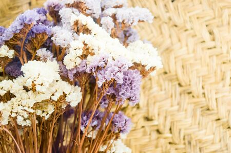 white colour: white and purple flowers