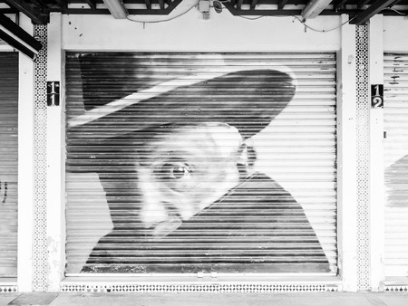 belongs: BENALMADENA, SPAIN - MAY 07: Picasso on a sliding shutter on May 07, 2015 in Benalmadena, Malaga, Spain. It belongs to the comarca of Costa del Sol. Editorial