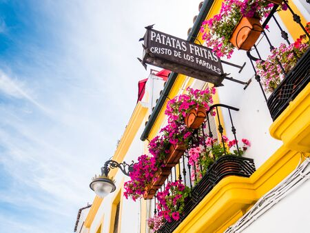 spanish homes: CORDOBA, SPAIN - MAY 08: typical street on May 08, 2015 in Cordoba, Spain. The historic centre was named a UNESCO World Heritage Site.