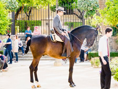 uomo a cavallo: CORDOBA, SPAIN - MAY 08: Traditional andalusian horseman riding in a park during the Festival of the Patios on May 08, 2015 in Cordoba, Spain.