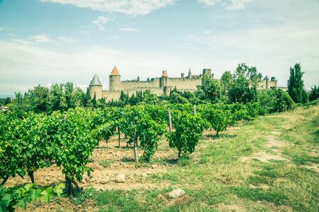 fortified: vineyards in Carcassonne, France Editorial