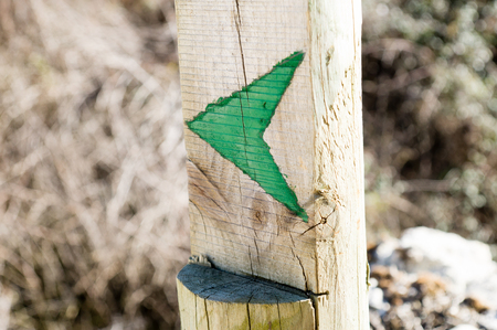 wooden stick: green arrow in a wooden stick