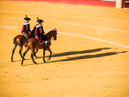 corrida: MALAGA, SPAIN - AUGUST 16: bullfight on August 16, 2015 in Malaga, Spain. La Malagueta is the bullring at Málaga (Andalucia, Spain) which first event was held in 1876.