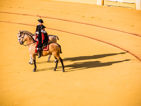 bull rings: MALAGA, SPAIN - AUGUST 18: bullfight on August 18, 2015 in Malaga, Spain. La Malagueta is the bullring at Málaga (Andalucia, Spain) which first event was held in 1876.