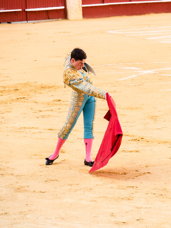 bull rings: MALAGA, SPAIN - AUGUST 12: bullfight on August 12, 2015 in Malaga, Spain. La Malagueta is the bullring at Málaga (Andalucia, Spain) which first event was held in 1876. Editorial