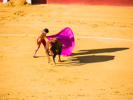 bullfight: MALAGA, SPAIN - AUGUST 16: bullfight on August 16, 2015 in Malaga, Spain. La Malagueta is the bullring at Málaga (Andalucia, Spain) which first event was held in 1876.