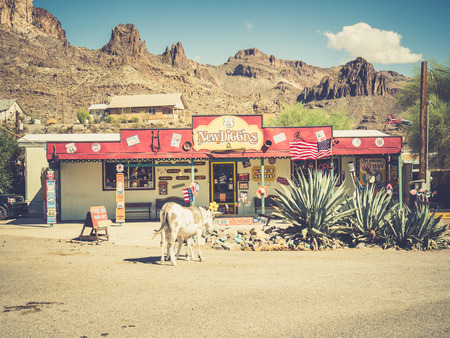 burro: OATMAN, USA - SEPTEMBER 06: Oatman street on September 06, 2015 in Oatman, California, United States. Oatman is a former mining town in the Black Mountains of Mohave County.