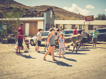 mining town: OATMAN, USA - SEPTEMBER 05: Oatman street on September 05, 2015 in Oatman, California, United States. Oatman is a former mining town in the Black Mountains of Mohave County.