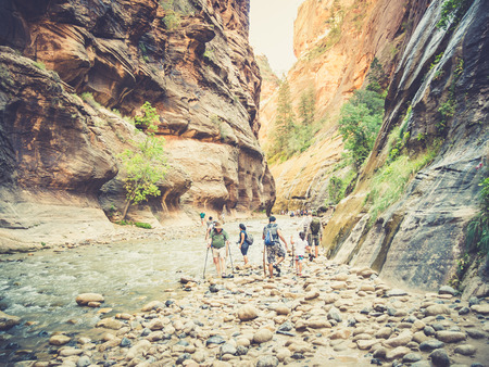 inhabit: ZION, USA - SEPTEMBER 08: Unidentified tourists on September 08, 2015 in Zion National Park, Utah, United States. Numerous plant species as well as 289 species of birds, 75 mammals and 32 reptiles inhabit the park.
