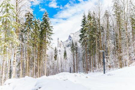 neuschwanstein: Beautiful view on Neuschwanstein castle in snowy forest