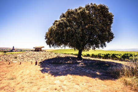 alava: View of famous Alava landmark - megalithic tomb on landscape with big tree in sunlight in Spain.
