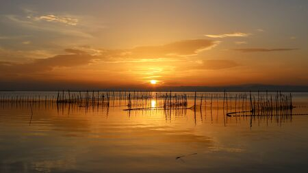 Sunset in Albufera of Valencia, Valencia, Spain.