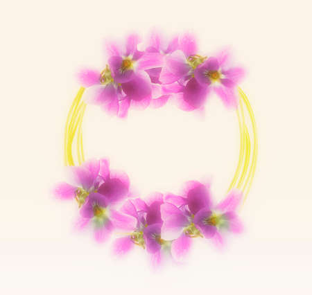 vintagern: flowers backgrounds