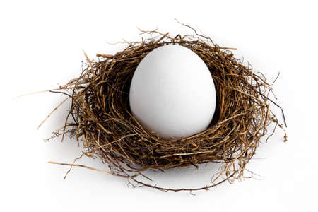 A nest egg on a white background