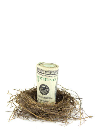 A close up of a roll of hundred dollar bills in a birds nest on a white background
