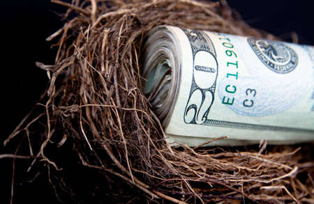 A close up of a roll of dollar bills in a birds nest on a black background with selective focus, with copy space