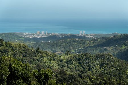 Panoramic view of the city from the jungle