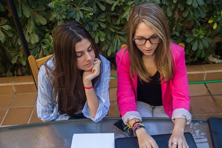 young entrepreneurs: Young entrepreneurs working with a laptop. They are two beautiful Caucasian girls Who are creating Their company. They work on the terrace of Their house. Stock Photo