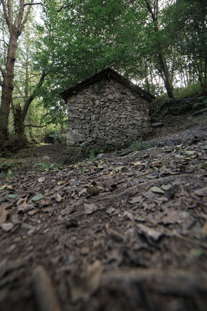 Landscape of one of the abandoned water mills of the Oneta Cascades forest in Asturias, Spain.