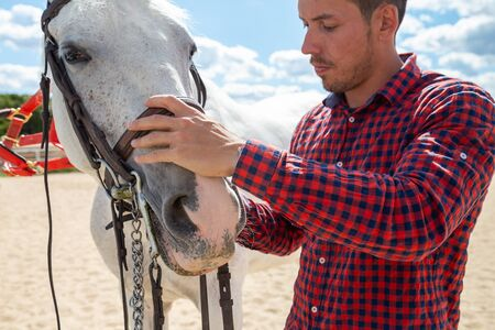 Young male in casual outfit fastening bridle near mouth of white horse while standing in paddock on sunny day on farm 写真素材