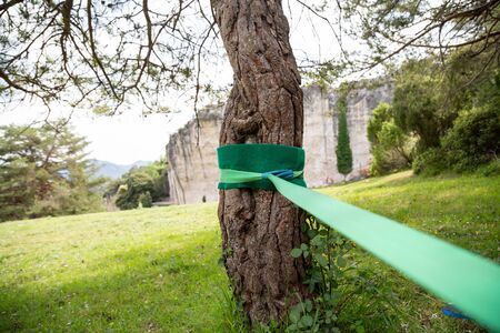 Slackline sport tape attached to the trunk of a tree ready to be used.