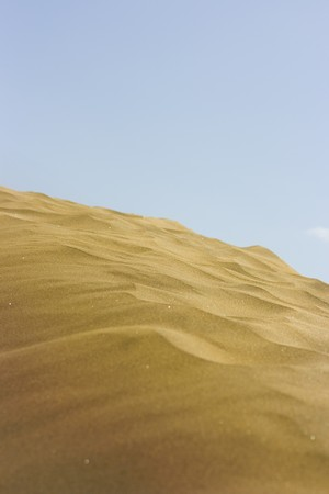 A photo of the warm texture of a desert. photo