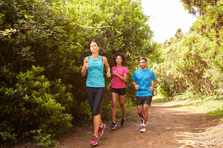 joggers: Group of three young joggers running a natural trail in daylight surrounded by trees and bushes in the late morning wearing t-shirts and black pants