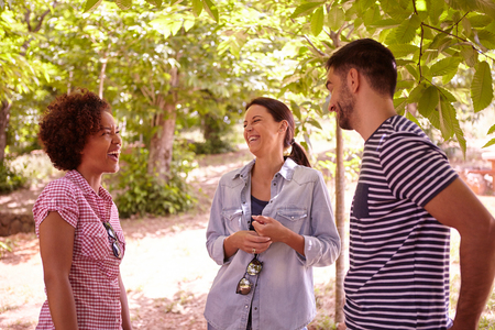 dappled: Three friends laughing at jokes in the dappled afternoon sunshine with some trees around them wearing casual clothing