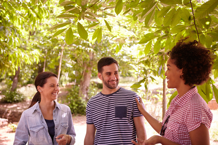 dappled: Three healthy friends chatting and laughing together in the dappled afternoon sunshine with some trees around them wearing casual clothing