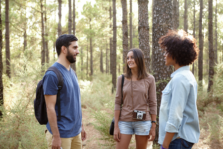 pine three: Three friends taking a break in a pine tree plantation in the late afternoon shadows in front of a tree while out for a hike Stock Photo