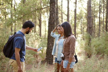 pine three: Three friends discussing something in a pine tree forest in the late afternoon sunshine while looking at the cell phone worriedly