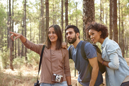 dappled: Three happy friends pointing at something in the dappled afternoon sunshine with pine trees around them wearing casual clothing Stock Photo